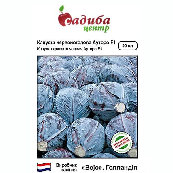 Капуста АУТОРО F1