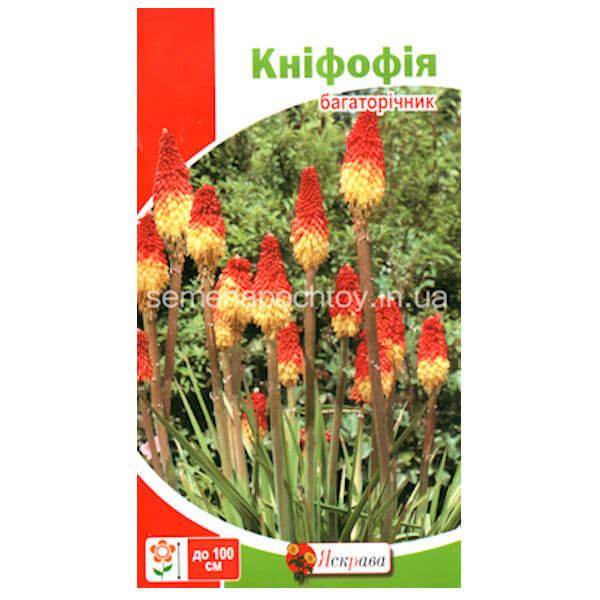 Семена Растение КНИФОФИЯ