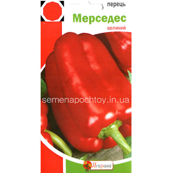Перец МЕРСЕДЕС