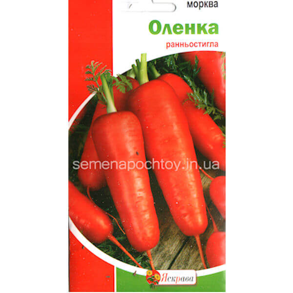 Семена Морковь АЛЕНКА