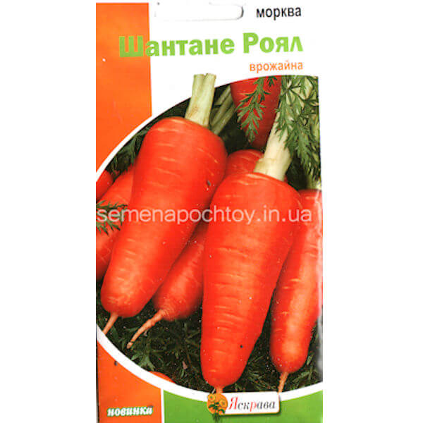Семена Морковь ШАНТАНЕ РОЯЛ