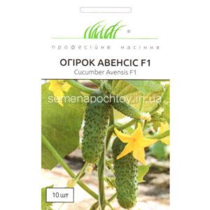 Купить семена Огурец АВЕНСИС F1
