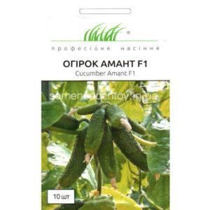 Купить семена Огурец АМАНТ F1