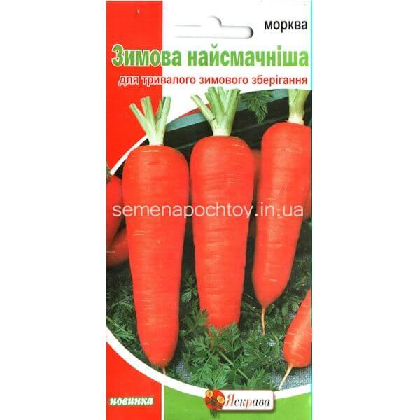 Морковь ЗИМНЯЯ